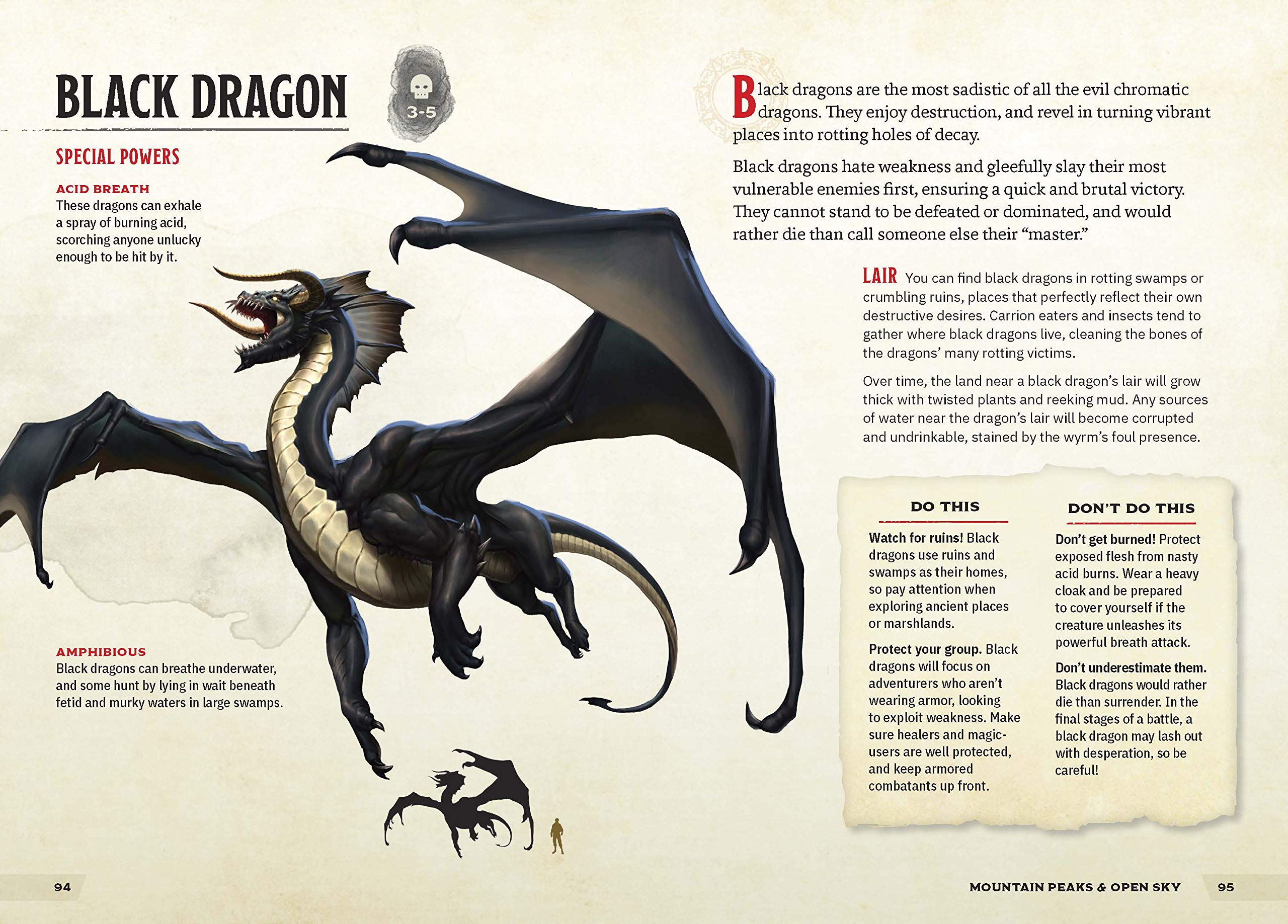 Black Dragon Young Adventurer's Guide